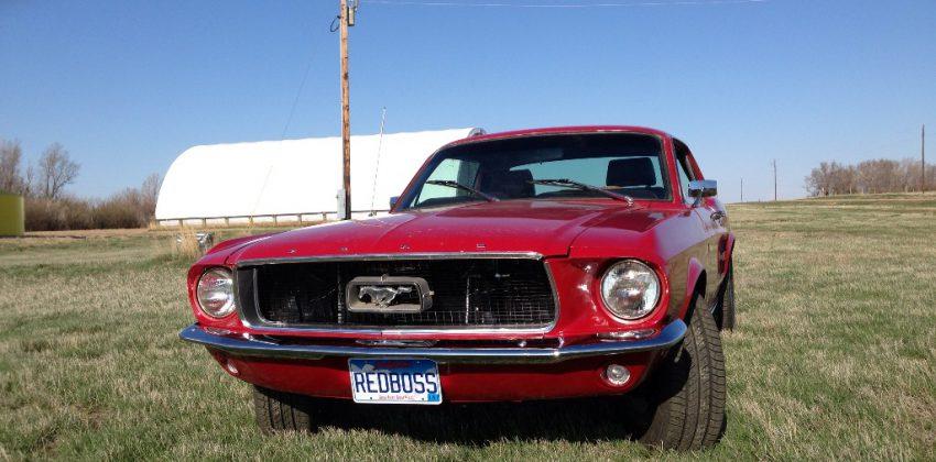 Curt Roddewig – '68 Mustang